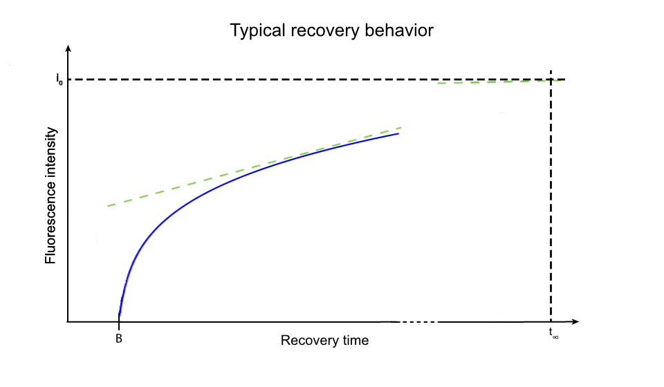 exposure time fluorescence graph typical recovery