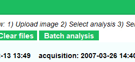 Screenshot of Batch Analysis button in Daybook Analysis software